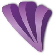 Purple Triangle Ltd